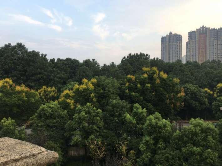 庐山国际别墅